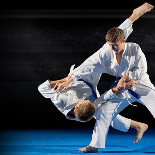 judo19-1024x640